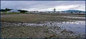 At low tide, Surfside RV Resort in Parksville, British Columbia is picturesque.