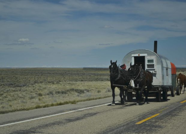 Since my camera was handy, I was able to capture this shot of a sheep-herders wagon approaching us on a blue highway in Wyoming.