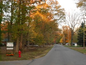 OHIO RESIDENTIAL WOODED LOT WITH LAND CONTRACT 0 INTEREST RATE AND 190 MONTH